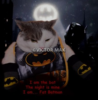 tn_Fat Batman